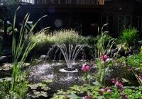 Springbrunnen 1